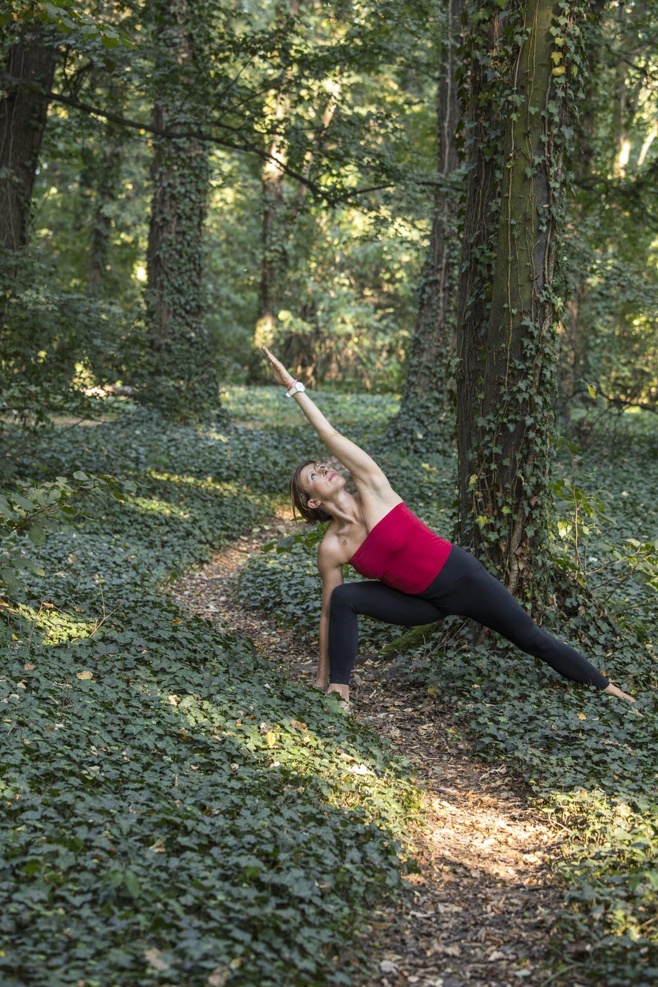 mysore joga